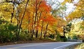 Bushaway Road