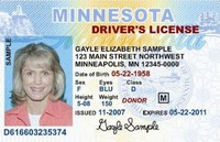 A sample Minnesota drivers license